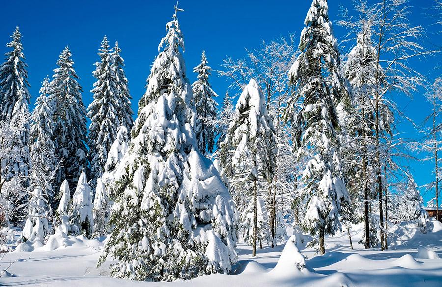hacer turismo rural en invierno en espana