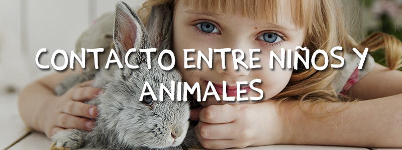 beneficio-niños-animales