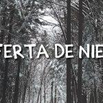 Oferta de nieve en Masía El Molinete