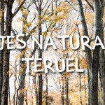 Cómo disfrutar de los parajes naturales de Teruel