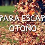 Planes para una escapada de otoño