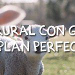 Hotel rural con granja: El plan perfecto para los niños
