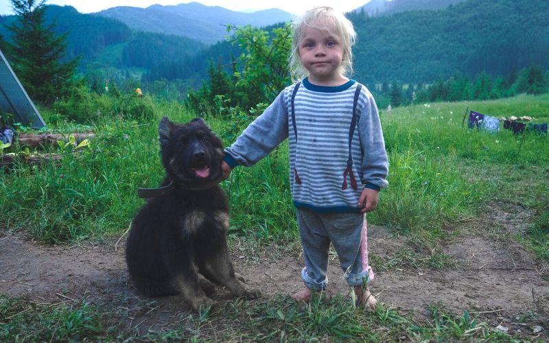 escapada rural con mascota en Teruel