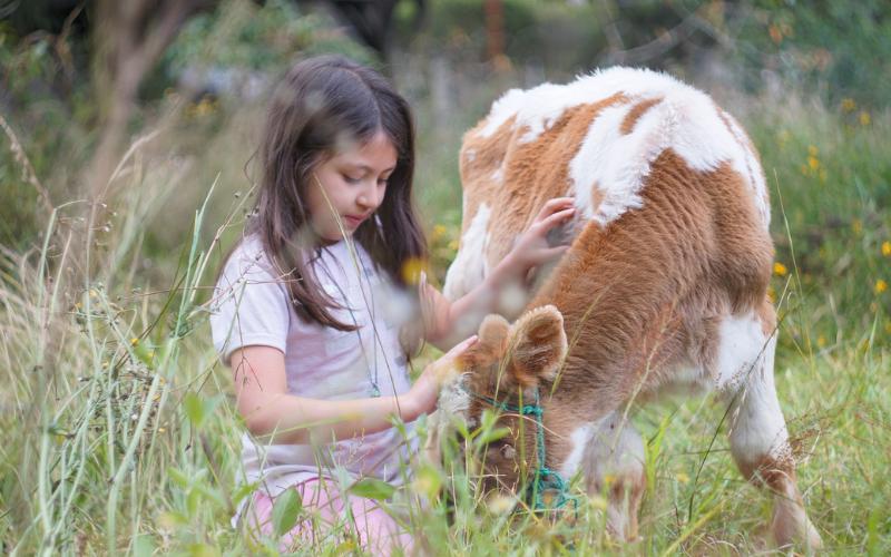 Vacaciones de verano en granjas con animales